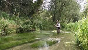 Chalk Stream Fishing